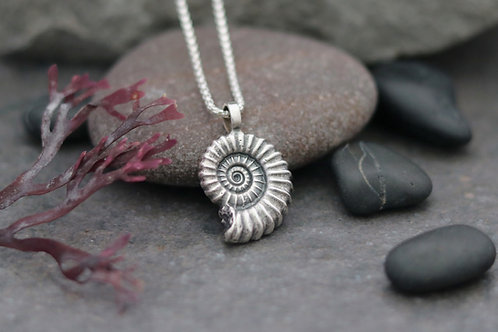 Large Ammonite Fossil Pendant