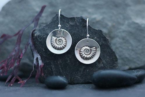 Ammonite Fossil  Cupped Dangle Earrings