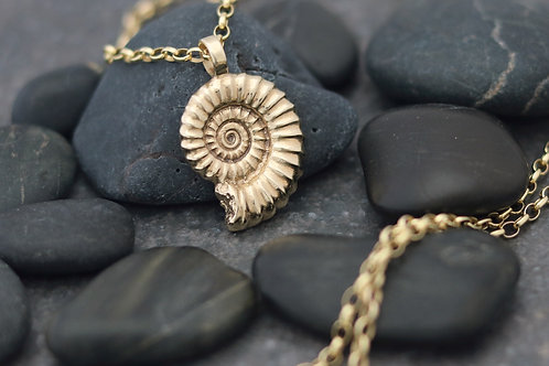 9ct Gold Ammonite Fossil Pendant - Large