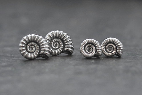 Ammonite Fossil Stud Earrings