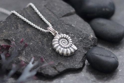 Ammonite Fossil Necklace - Medium