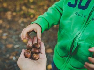 Teaching teenagers in Shanghai to save their acorns