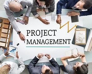Project Management Work Process Organiza