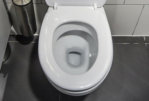 Toilets%20%26%20Sinks%20Installation_edited.jpg
