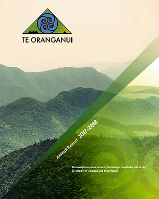 2017-18 Annual Report Cover.PNG
