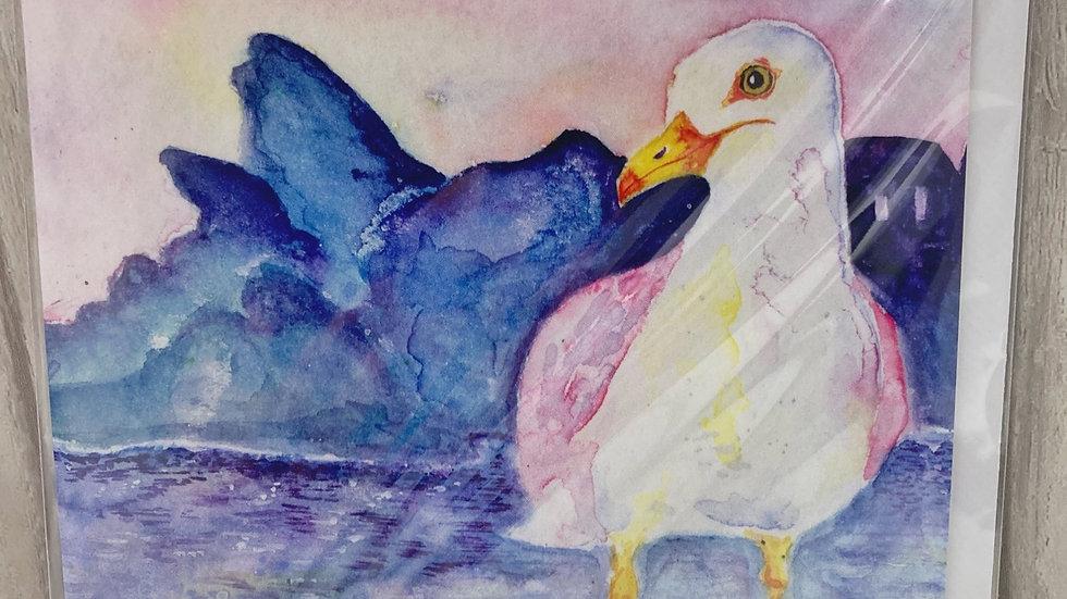 Polperro Seagull Greeting Card.