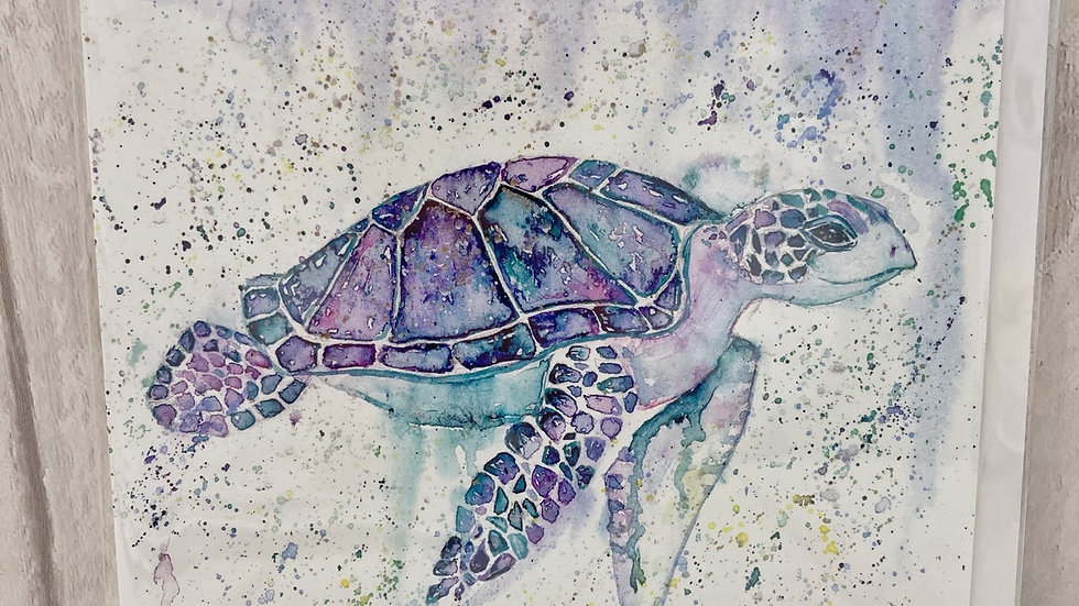 Turtle greeting card.