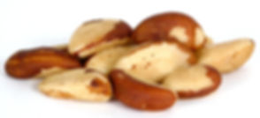 brazil-nuts-clipart-6.jpg