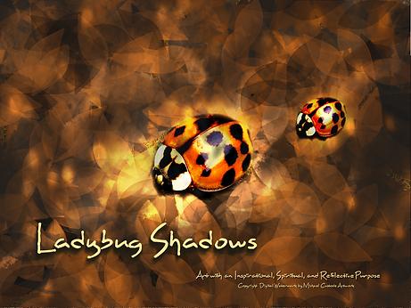 Ladybug Shadows