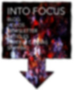 Into Focus.png