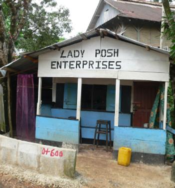 lady posh.png
