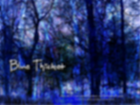 Blue Thicket