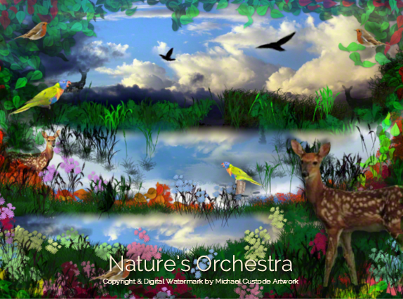 210 Nature's Orchestra