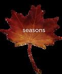 seasons.png