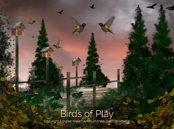 212 Birds of Play