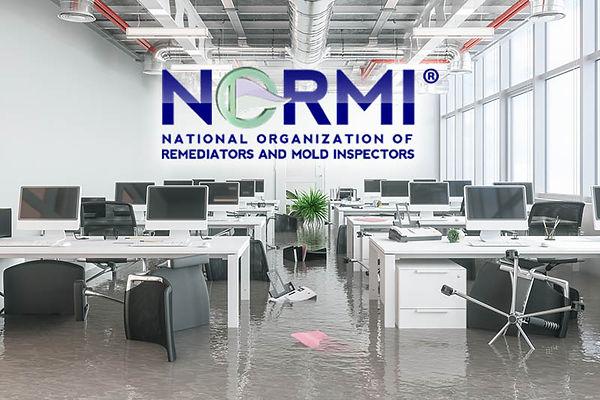 NORMI-WRT-course.jpg