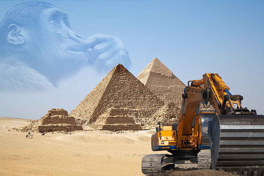 In this picture, a gorilla is thinking about the effect that modern hydraulic machinery would have possibly had on milestone feats of ancient architecture if they had the technology at the time and how much easier it would have been to undergo...