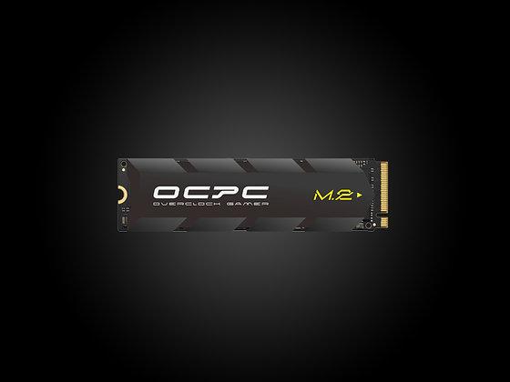 SSD M.2 XT NVMe PCIe 256GB
