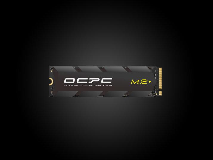 SSD M.2 XT NVMe PCIe 1TB