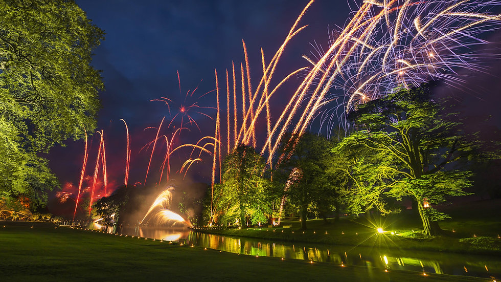 Fireworks with trees and a lake in the background