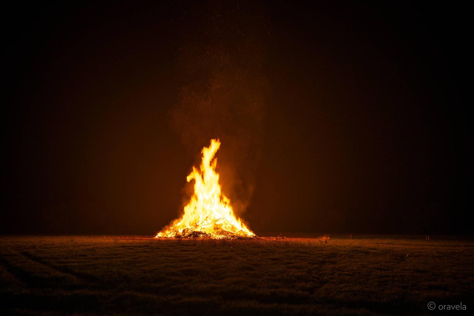 Bonfire Night Firework Displays