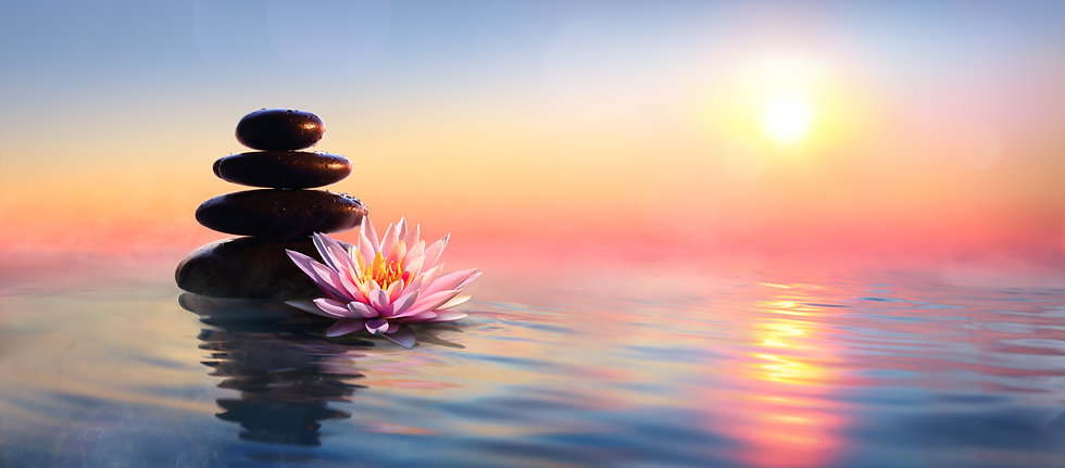 Zen Concept - Spa Stones And Waterlily I
