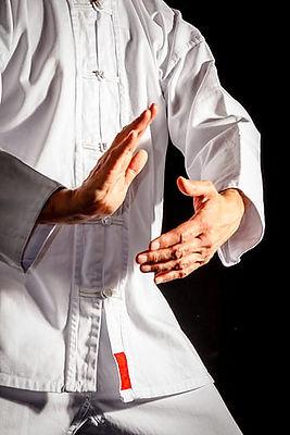 tai-chi-taiji-taijiquan-martial-arts-roy