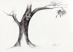 tree heads