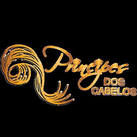 ARQUIVO SEM FUNDO_edited.png