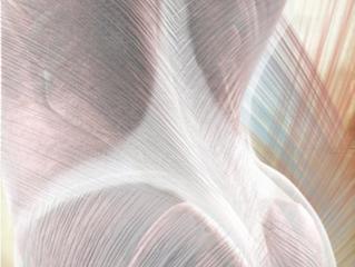 Neu bei Keyoga: Faszientraining nach Liebscher + Bracht