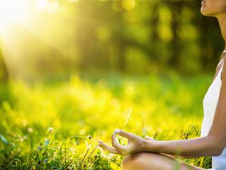 Übungsreihe Frühsommer 2016: Detox-Yoga