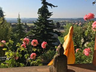Yoga wieder jeden Mittwoch in Basel!