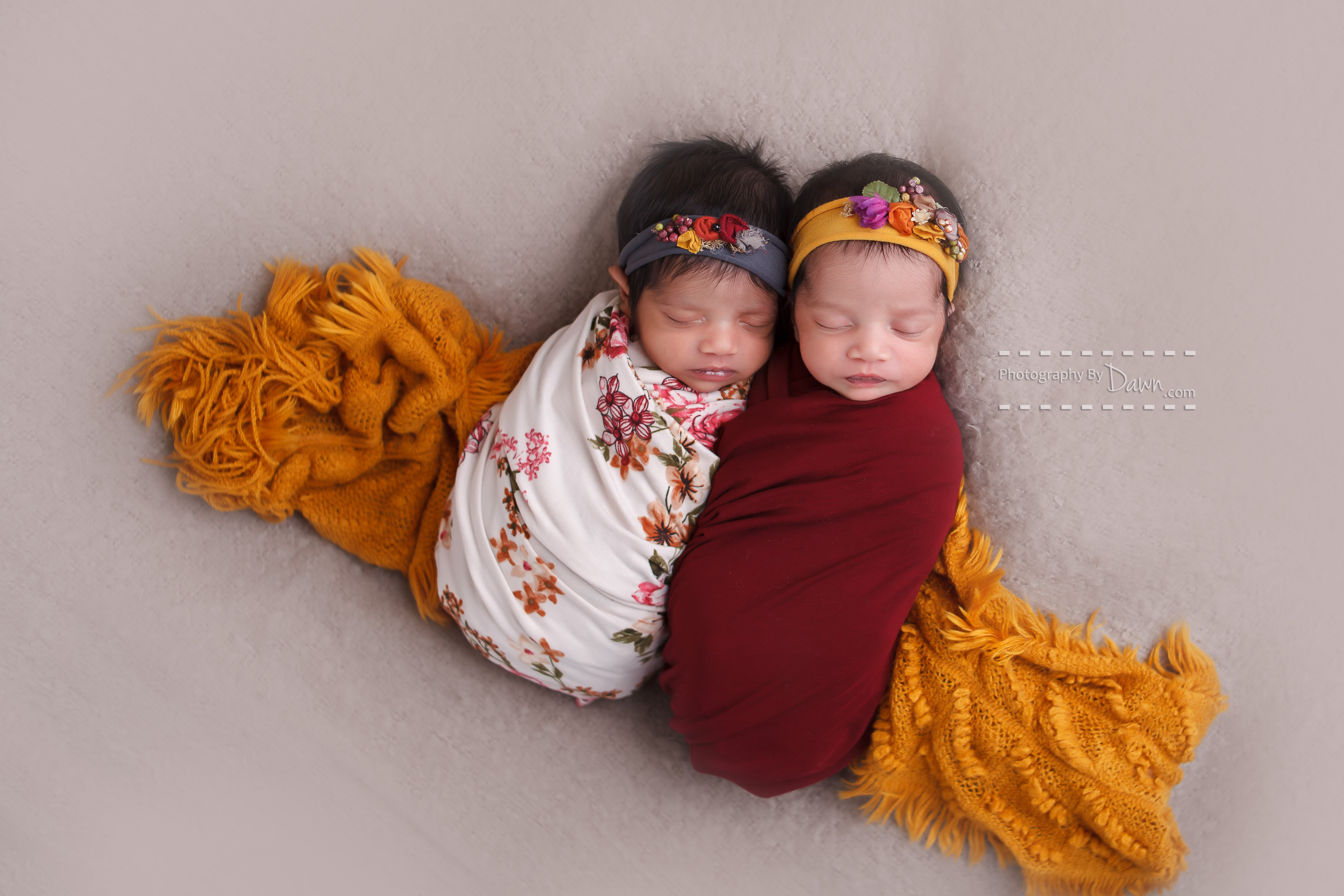 Toronto Newborn Twin Photographer