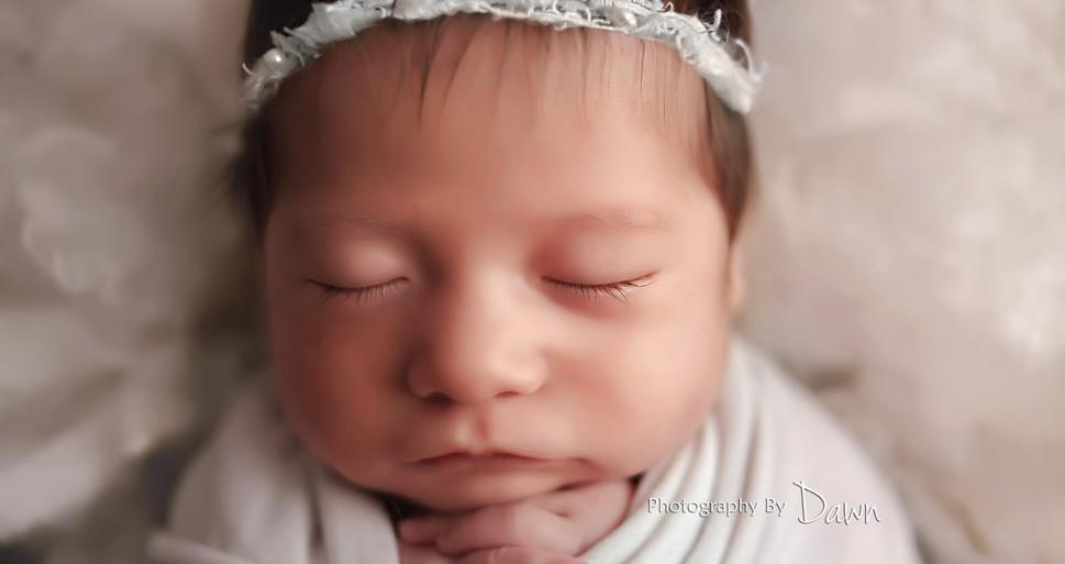 Toronto Newborn Twin Photographer
