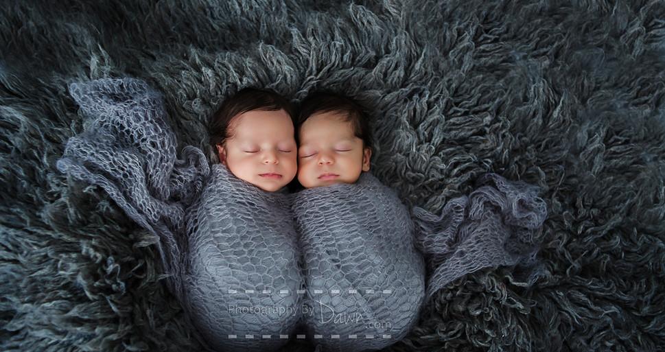 Toronto Newborn Twin Lifestyle Photographer