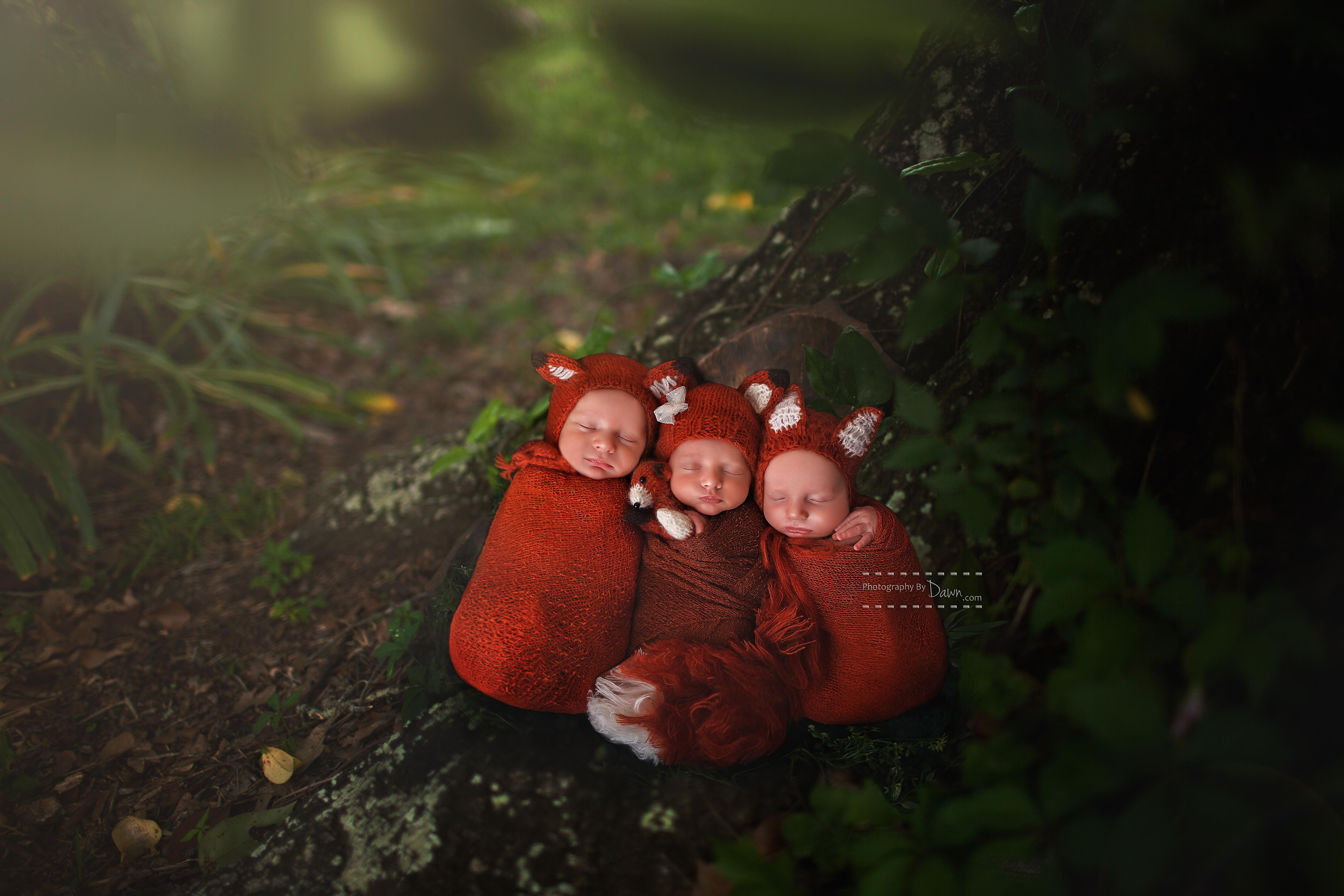Toronto Triplet Newborn Photographer