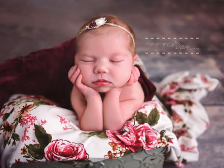 Newborn photography ~ Toronto newborn photographer ~ Little Rose