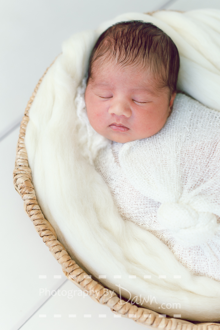 Toronto Newborn Photographer