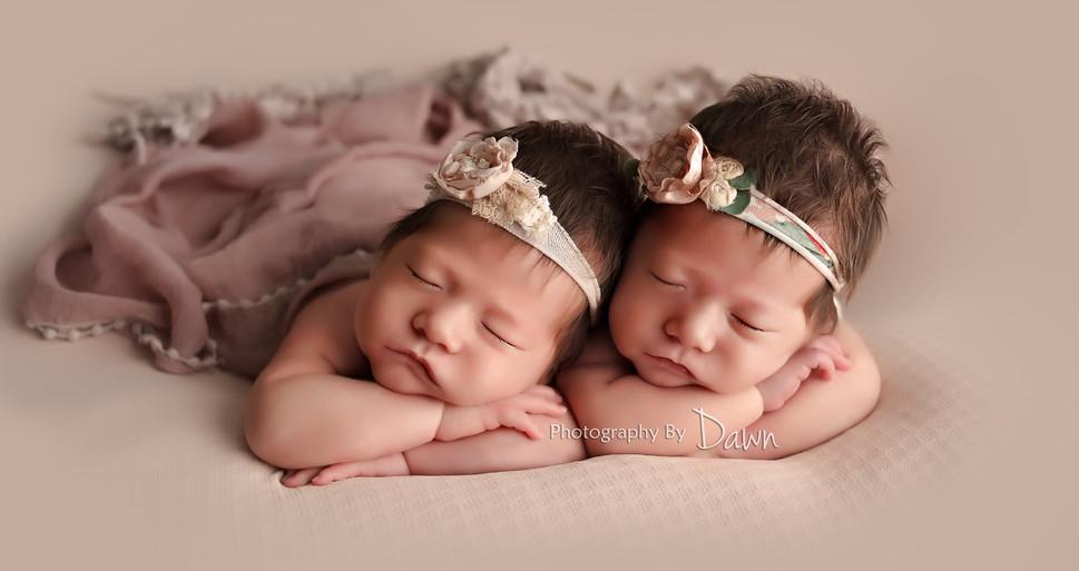 Beautiful Newborn Twin Girl Photo