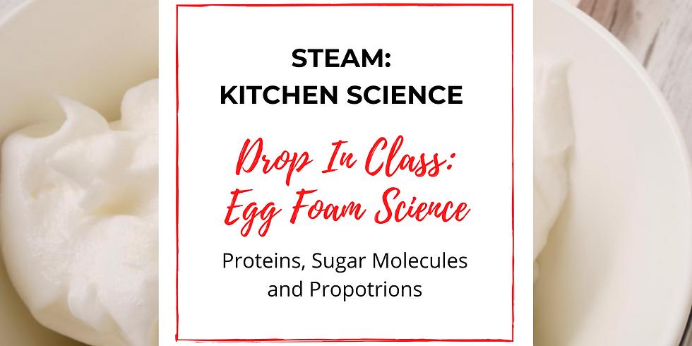 STEAM Kitchen Science: Egg Foam Science