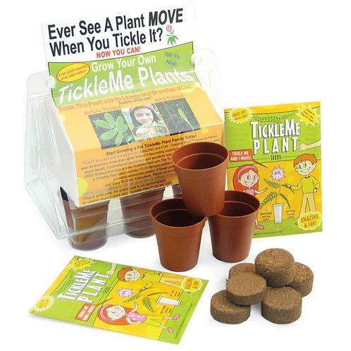 Tickle Me Plant Kit
