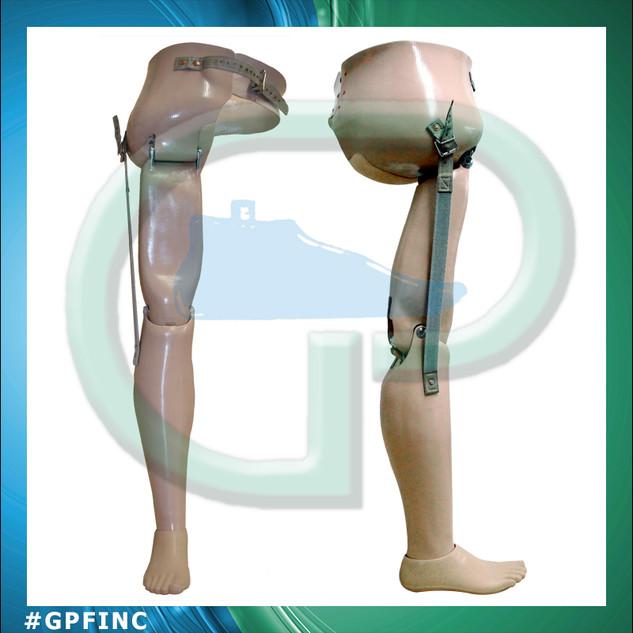 Exo Hip Disartic Prosthesis