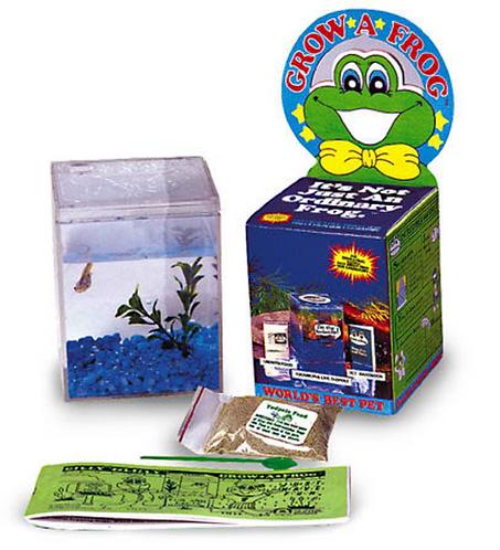 Grow A Frog Kit