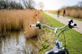 luc cassiman - fietsen.jpg