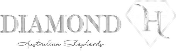 Diamond H Logo Website.png