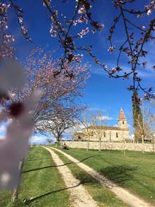 Marcadis Church.jpg