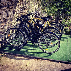 Mountain bikes and city bikes.jpg