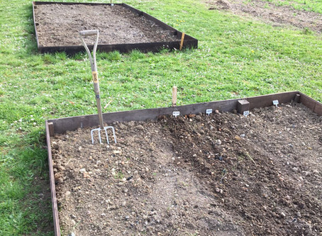 Designing a French Allotment