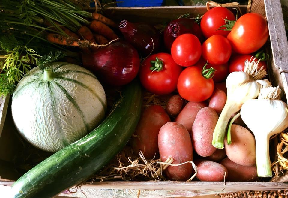 potager vegetables