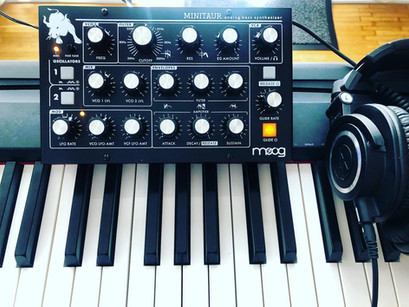 Moog Minitaur Love